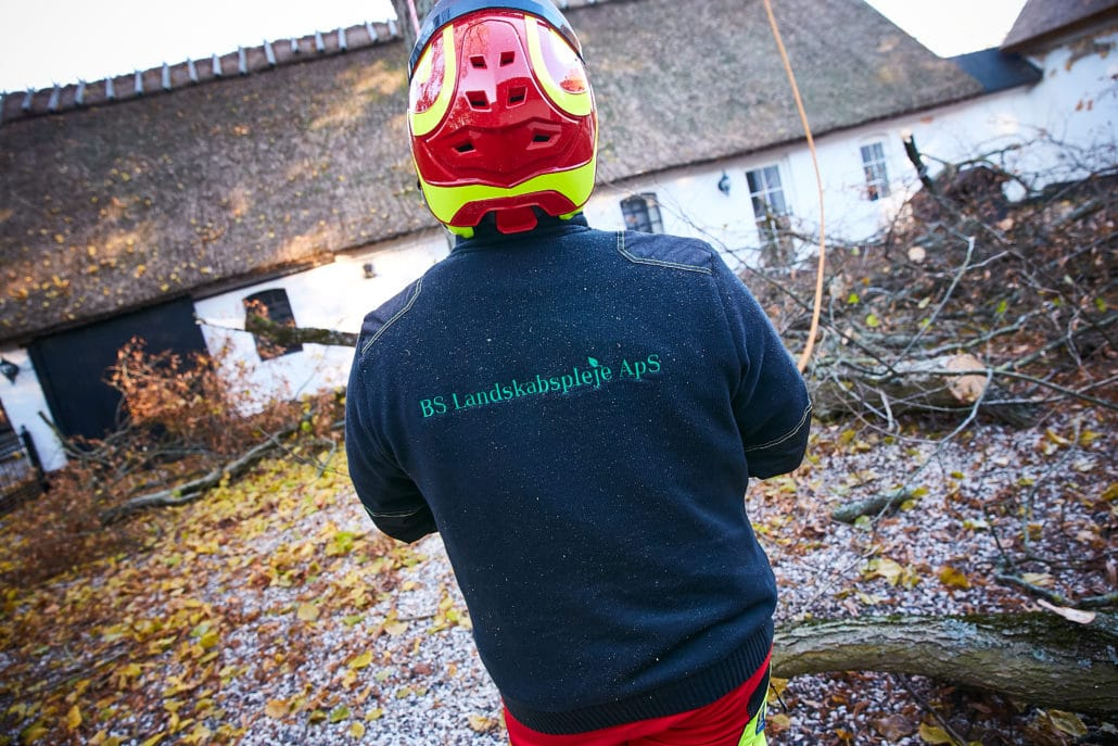 Træfældning og træbeskæring fra bslp.dk