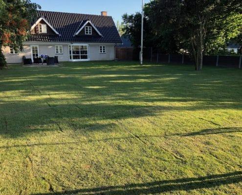Få tilbud på rullegræs fra bslp.dk/rullegraes